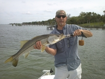 Clearwater Snook Fishing trips